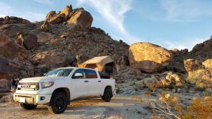 Mojave Wander 030