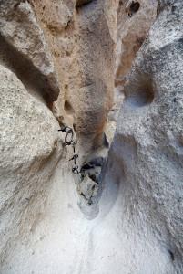 Mojave Wander 046