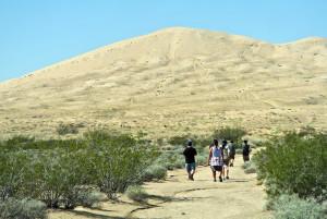 Mojave Wander 058